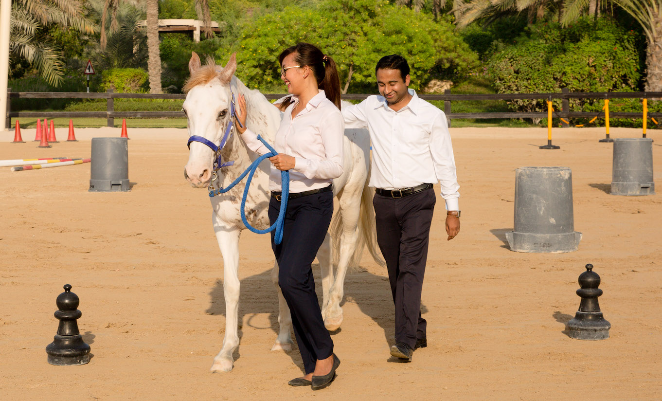 Equine based team building in Dubai with horses