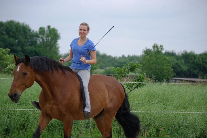 rider, fun, Dubai, horsemanship, bareback