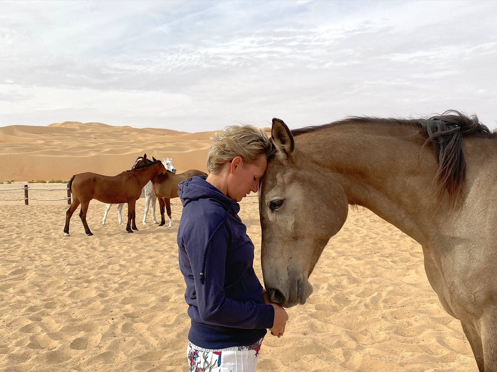 coherence through Horse Guided Empowerment, mind body soul, mindfulness, desert, Dubai
