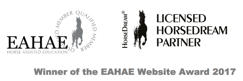 EAHAE Website Award 2017 Dubai