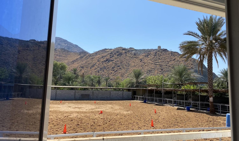Fujeirah, Fujairah, Corporate Trainings, Khor Fakkan, companies, leadership, horses, equine