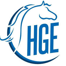horse guided empowerment dubai