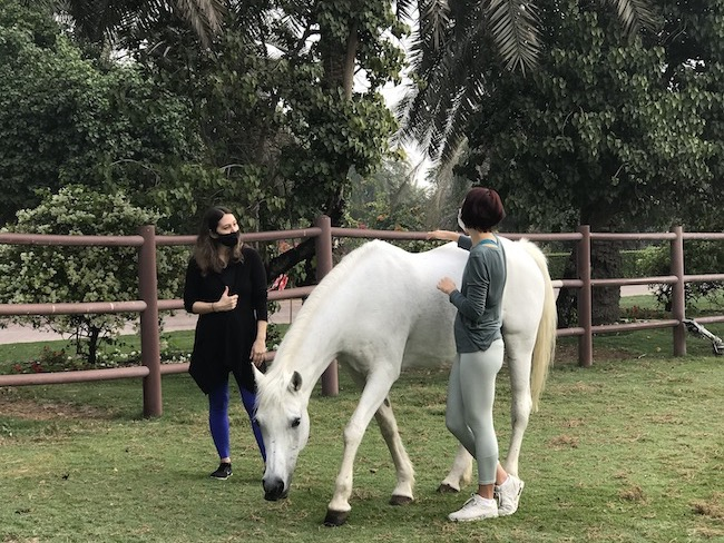 mothers connecting horses equestrian menta health dubai