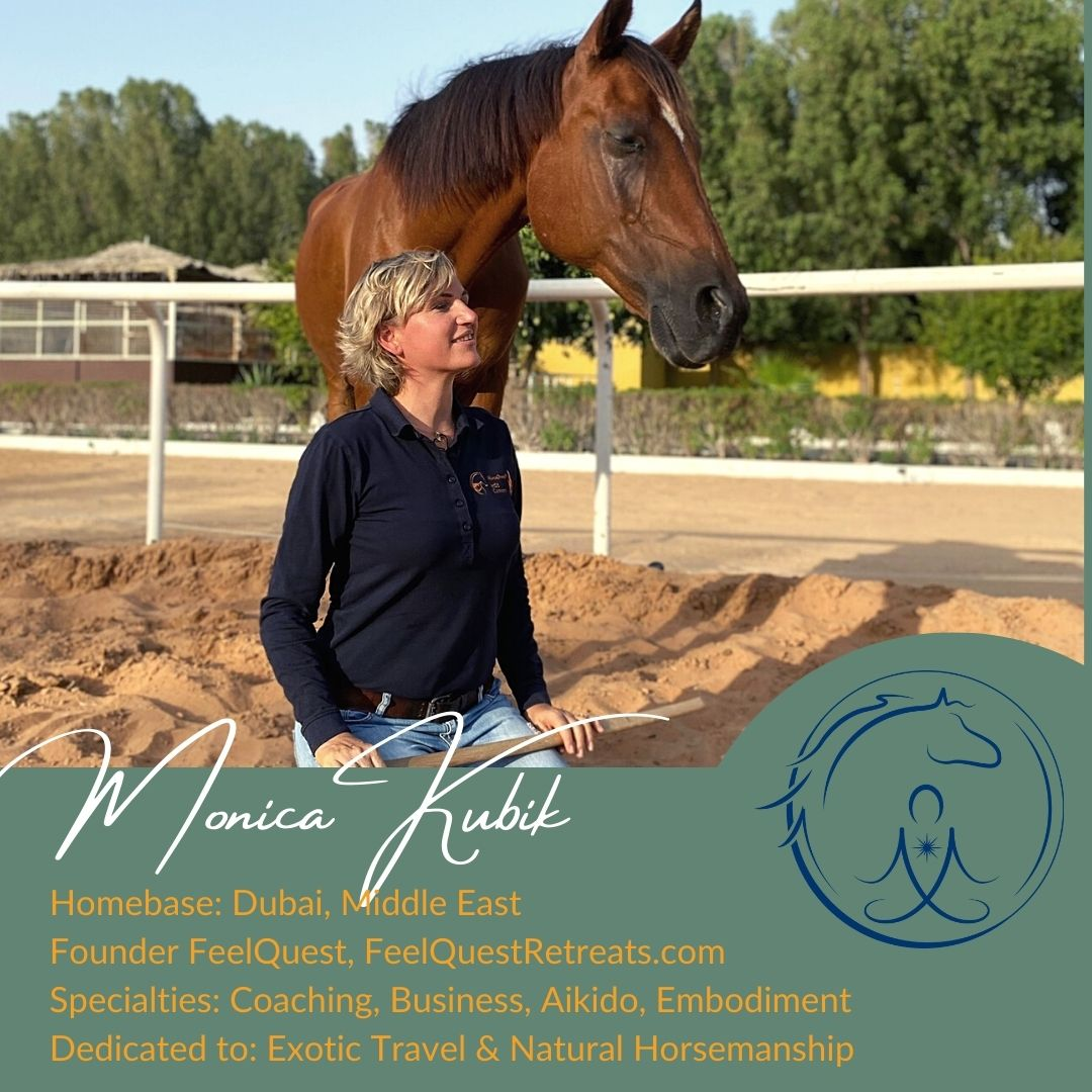 Dubai, Middle East, Aikido, Embodiment, Coaching with horses, Feelquest, Feelquest Retreats, Monica Kubik