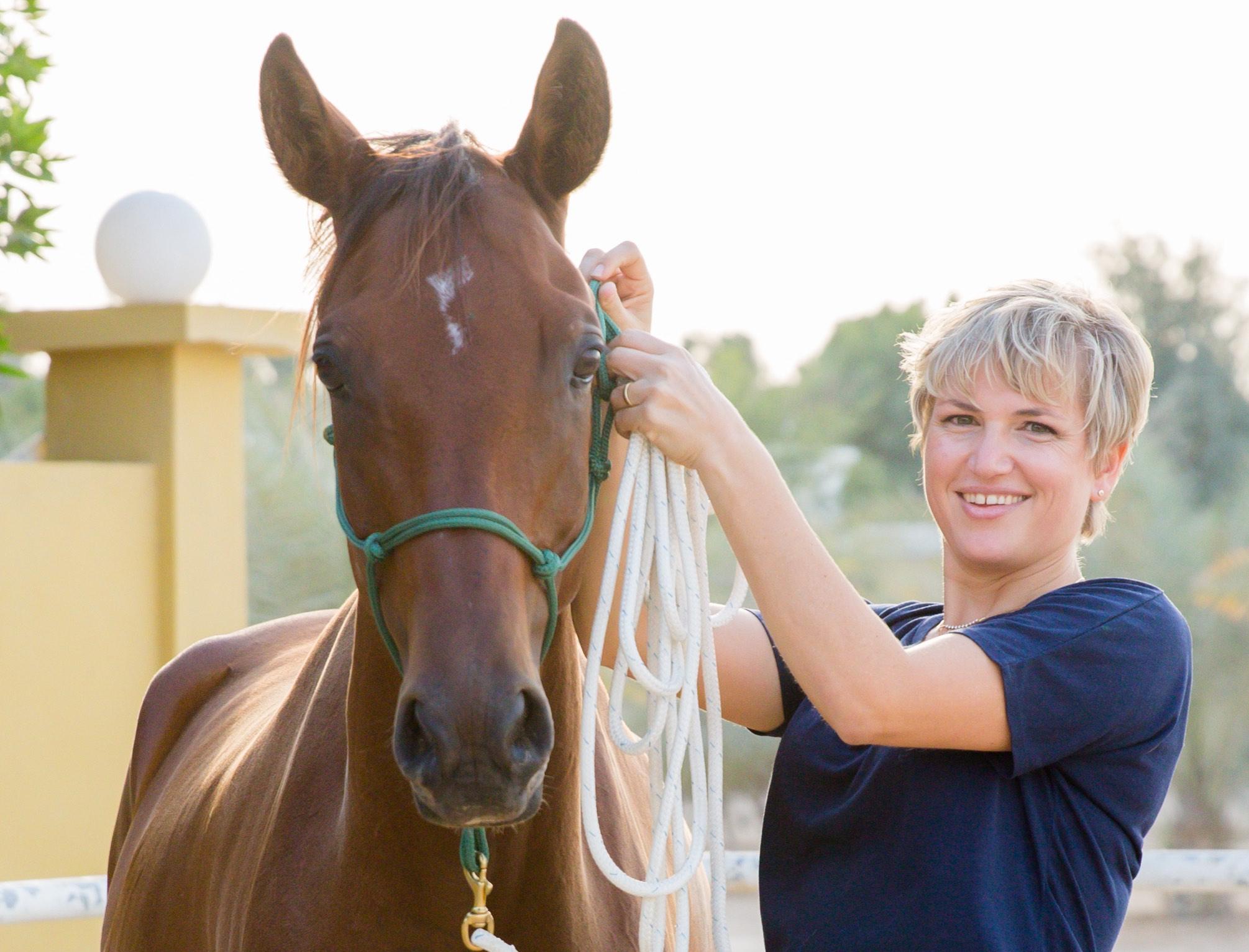Contact Leadership Dubai Course Horses corporate seminars